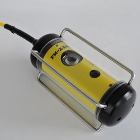 Made in Japan waterproof camera side